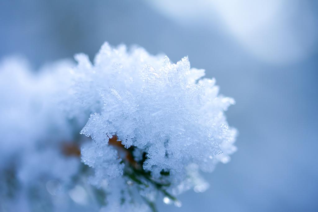 Winterfotografie tips - Karijn Fotografie -6606