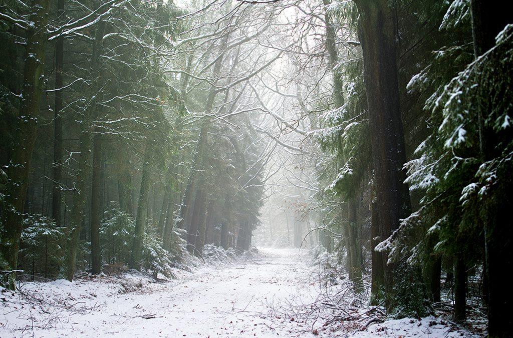 Winterfotografie tips