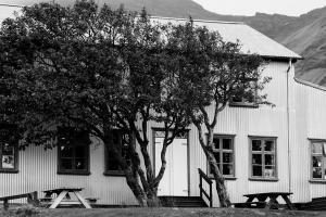 IJsland -karijn fotografie-07