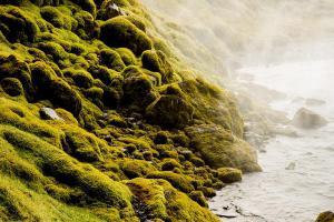 IJsland -karijn fotografie-23