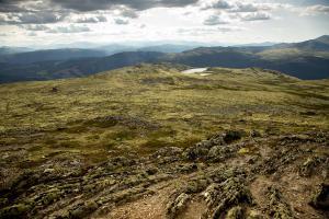 Noorwegen     karijn fotografie-0145