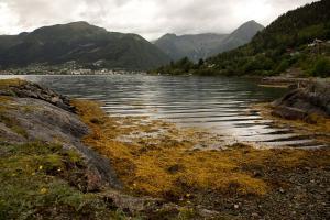 Noorwegen     karijn fotografie-0959