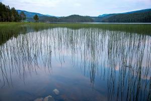 Noorwegen     karijn fotografie-9606