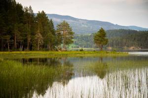 Noorwegen     karijn fotografie-9610