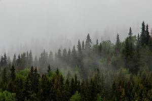 Noorwegen     karijn fotografie-9772